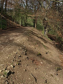 Path to The Lake, Studley Park - geograph.org.uk - 1263313