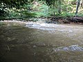 Patuxent River State Park 60.jpg