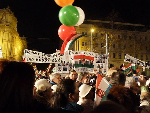 Peace March for Hungary 2012.01.21 (9)