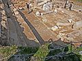 Peltae in Tzafririm Mosaic, Israel (1) (5382057224).jpg
