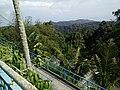 Penang Hill, Malaysia (18).jpg