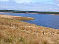 Penwhirn Reservoir - geograph.org.uk - 313185.jpg