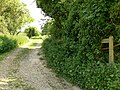 Permissive Bridleway - geograph.org.uk - 818471.jpg