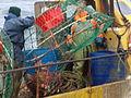 Pesca de centolla en la Bahía Ushuaia 25.JPG