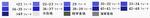 Phdepth 日本語版.png