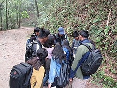 Photowalk and Bird Watching at Shivapuri National Park - Pani Muhan & Jama Chowk Area (2).jpg