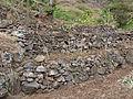 Pico da Antonia-Manioc en terrasses.jpg