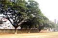 Playground NDC Dhaka by Mayeenul Islam.jpg