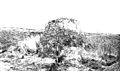 Pleistocene deposits of the Thames valley. Wellcome M0014959.jpg