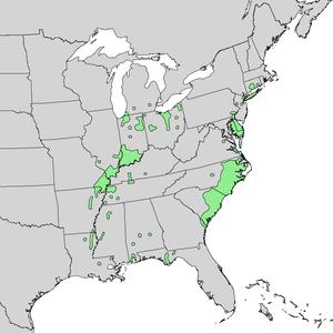 Populus heterophylla - Image: Populus heterophylla range map 1