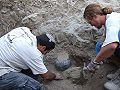 Pottery in Situ, Archaeology sites excavation.JPG
