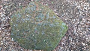 Ecclesall Woods - Cup-and-ring marked rock