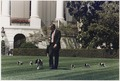 President Bush walks on the South Lawn of the White House, followed by Millie and her puppies - NARA - 186390.tif