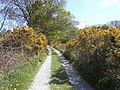 Public footpath near Frankby Cottage, Wirral (2).JPG