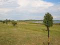 Puiserannakarjamaa.png
