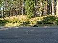 Punkaharju - panoramio (9).jpg