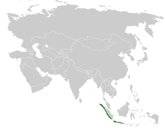 Pycnonotus bimaculatus distribution map.png