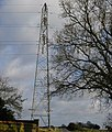 Pylon - geograph.org.uk - 126542.jpg