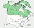 Pyrola grandiflora Distribution.png