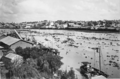 Queensland State Archives 3539 Brisbane River with water hyacinth washed down in flood waters from the Bremer River 17 March 1937.png
