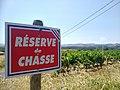 Réserve de chasse au milieu des vignes, Saint-Laurent-d'Oingt, Rhône (juil 2020).jpg
