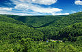 RBWSP Mountain Basin.jpg