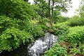 RHS Garden Harlow Carr - North Yorkshire, England - DSC01128.jpg
