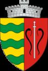 ROU SV Vadu Moldovei CoA.png