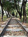 Rails and Locomotive - Burma-Siam 'Death Railway' - Thanbyuzayat - Near Mawlamyine (Moulmein) - Myanmar (Burma) (11954434375).jpg