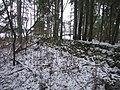 Raka mõisa kalmistu 03.JPG