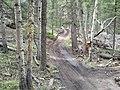 Rampart Range Moto Trail - panoramio.jpg
