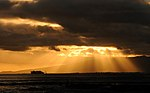 Rays of Sunshine (4769921147).jpg