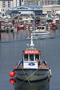 Rebalo. Porto de Ribeira. Galiza 31-03-2012.jpg