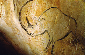 Woolly rhinoceros - Chauvet cave art depicting a woolly rhinoceros.