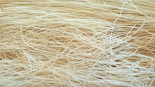 Rice vermicelli Thin dried noodles made of rice