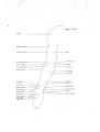 Richer - Anatomie artistique, 2 p. 90.png