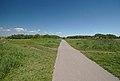 Rimrose Valley, summer 2021 1.jpg