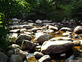 River Dart at Dartmeet..jpg