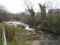 River Rhiew in Berriew - geograph.org.uk - 758264.jpg