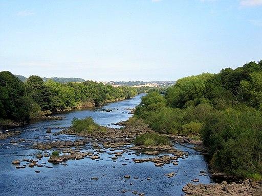 River Tyne below Wylam Bridge - geograph.org.uk - 1726708