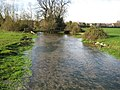River Whitewater in Warnborough Green - geograph.org.uk - 1055668.jpg