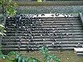 Riverside Steps - geograph.org.uk - 897868.jpg