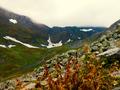 Riyaat Valley - Upper Gilgit.png