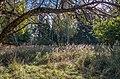 Rožkalnu pagasts, LV-5325, Latvia - panoramio (12).jpg