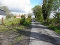 Road at Dring (geograph 2914427).jpg