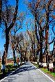 Road near Marvao.jpg