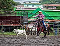 Rodeo Event Calf Roping 41.jpg