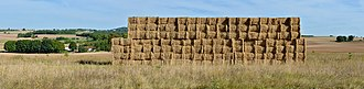 Baler - Large rectangular bales in a field, Charente, France. Sizes of stacks of baled hay need to be carefully managed, as the curing process is exothermic and the built up heat around internal bales can reach ignition temperatures in the right weather history and atmospheric conditions. Building a deep stack either too wide, or too high increases the risk of spontaneous ignition.