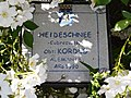 "Rosa ""Heideschnee"", ""Moon River"" o KORconta. 01.jpg"