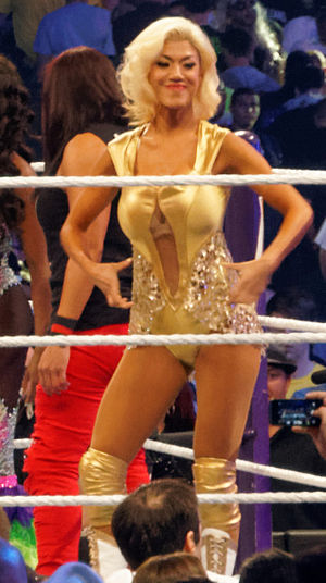 Rosa Mendes - Mendes at WrestleMania XXX in April 2014